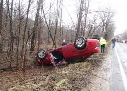 Falling tree causes car crash