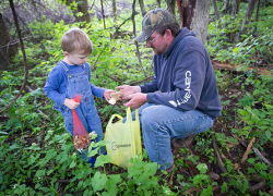 DNR to give folks a hand in their hunt for morels