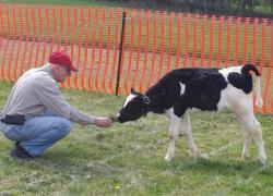 Rotary Cow Plop Winners