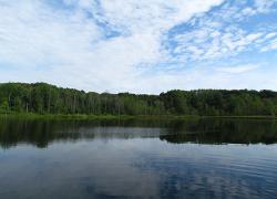 $200,000 grant will help restore wetlands