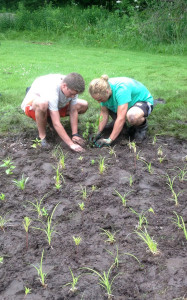 Rockford High School students Max Homrich and James Olsen installing a rain garden for a property owner on Rum Creek.
