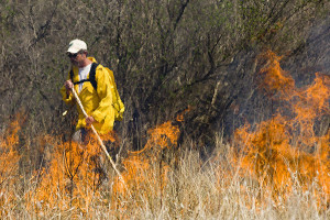 A Michigan Department of Natural Resources firefighter conducts a controlled burn. Photos courtesy of Michigan Department of Natural Resources.