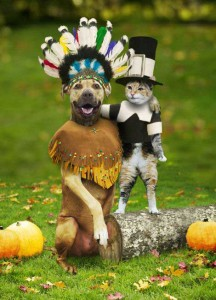 The feud between dogs and cats can be traced back to the first Thanksgiving, when the two sides fought over who got first dibs on the wishbone.