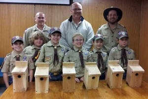 N-Cub-scout-donation