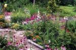 OUT-Garden1