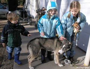 Children from the Greenville Michigan Inclusive Connection for Home Learners visit with the dogs at Thunderfeet Kennel and Dog Sleds in Howard City.