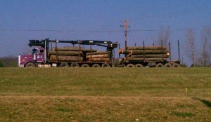 N-Logging-truck