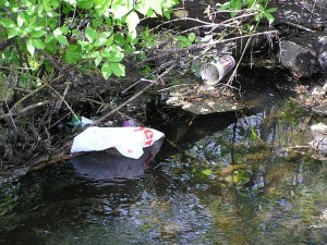 This shows how trash can mar the beauty of Cedar Creek. Post photo by J. Reed.