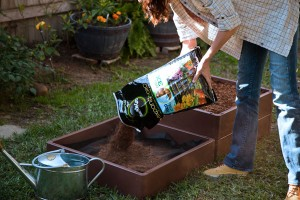 DIG-Cool-new-concepts-for-gardening