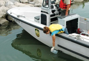 Michelle Budny from the University of Notre Dame collects a water sample from Lake Erie for eDNA screening