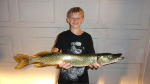 OUT-Catch-of-week-Ringler-Pike