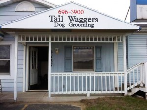 N-Tail-wagger
