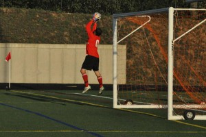 Josh Champion credited with 19 saves in loss to Forest Hills Eastern.