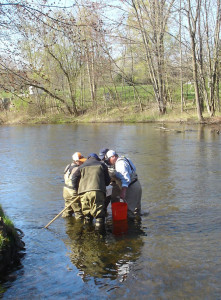 -OUT-stream_insect_sampling