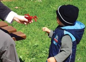 N-Reassuring-children-after