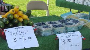 N-Solon-Farm-market-to-open
