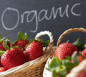 Changing perceptions about just how much healthier organic foods are than non-organic foods are impacting the growth of the sector. But even if the personal health benefits of eating organic aren't significant or clear, the environmental advantages of organic agriculture still make the practice well worth supporting. Photo Credit: iStockPhoto
