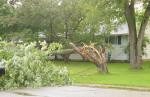N-Storm-damage1