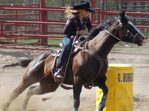 OUT-Horse-rodeo-barrels-cow-camp-2013