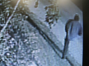 Suspect caught on surveillance video.