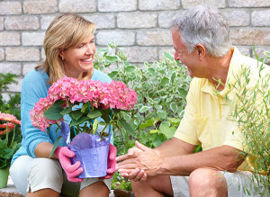 BLOOM-Tips-to-avoid-injury-while-gardening