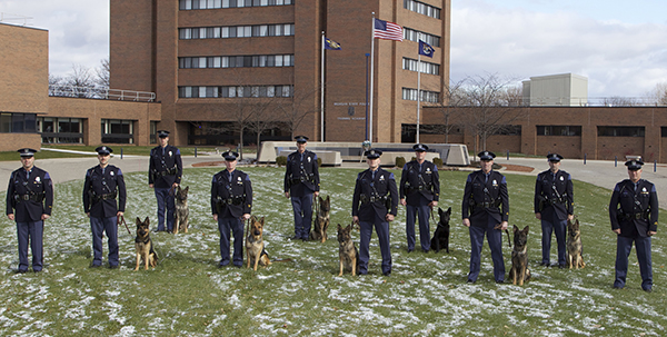N-MSP-NewK9Teams-web