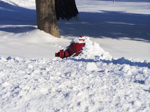 Homeowners should keep fire hydrants clear and sidewalks shoveled. Photo courtesy of Howard City Police Department.