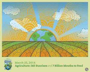 One farmer = 144 people fed and clothed. America's food producers play a vital role in feeding an ever-growing and increasingly affluent global population.