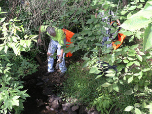 N-Cedar-Creek-cleanup-promo-web