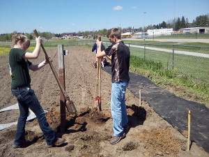 Erika and Dave setting posts for the community garden.