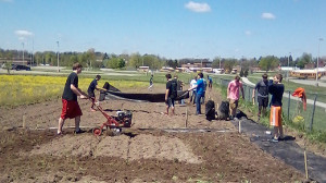 The class doing rototiller work in the garden.
