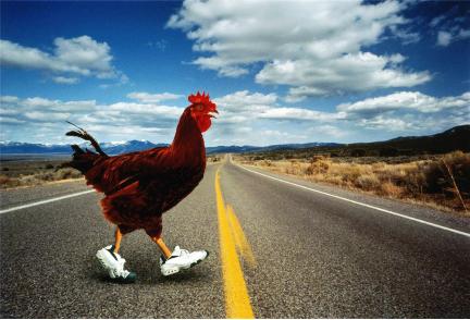 ENT-chicken