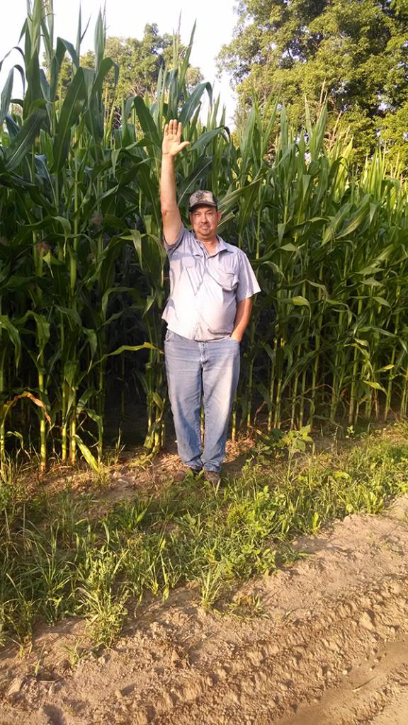 N-Corn