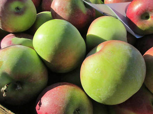 AWE-Fresh-market-apples