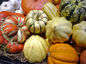 AWE-Fresh-market-winter-squash