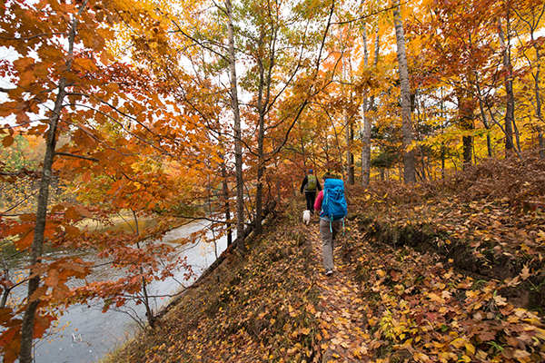 Michigan's Iron Belle Trail follows the existing North Country National Scenic Trail for most of its length in Michigan, including through the Manistee National Forest (shown here). Photo courtesy of North Country Trail Association.