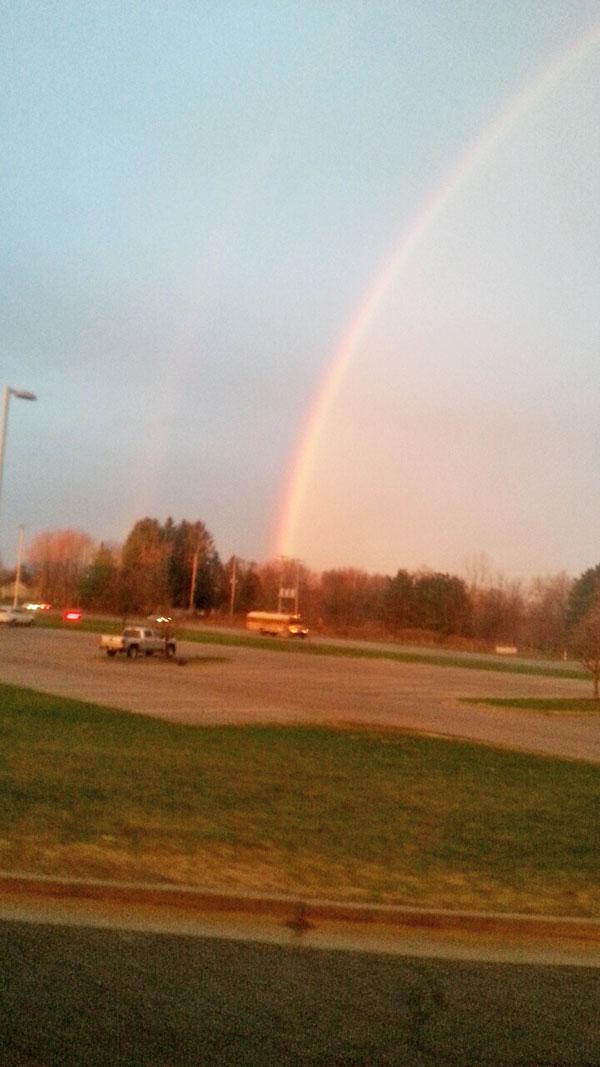 N-Bus-rainbow
