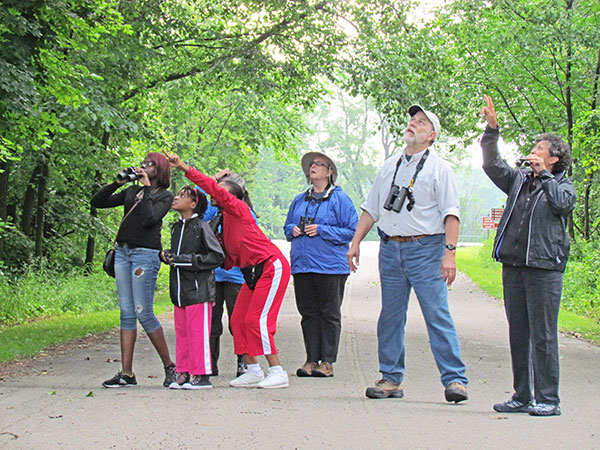 Michigan state parks, trails and natural areas offer plenty of opportunities for birding enthusiasts to spot birds on the move. More than 40 species of warblers have been observed in Michigan.