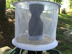 A Gravid trap, lures pregnant female mosquitoes by creating a false breeding environment.