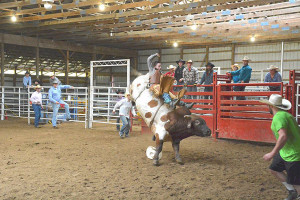 Participants in the Little Britches Rodeo at the Kent County Youth Fair must be 18 and under.