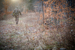 Michigan deer hunters spent 8.8 million days afield last year.