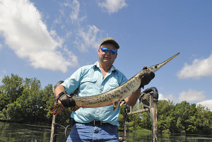 DNR Fisheries Division boat captain Roy Beasley shows off a longnose gar he arrowed on Lake Erie. Michigan DNR photo.