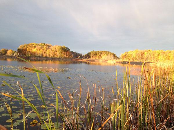 N-Fall-landscape