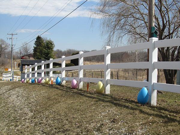 _N-Easter-eggs