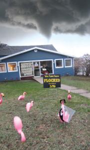 N-tornado-flamingos