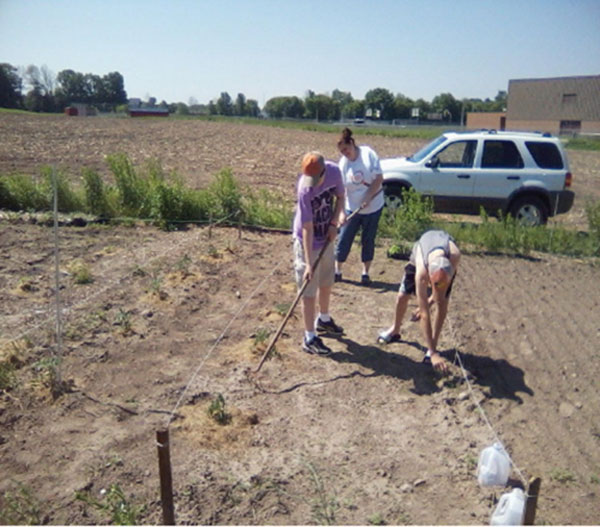 Community members work in last year's garden.