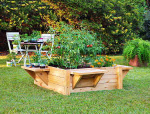 Raised bed gardens with benches make it easier to plant, maintain and harvest. Photo credit: Bonnie Plants