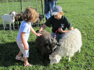 Kids enjoy the petting zoo at the Solon Market.