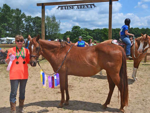 Hannah Salisbury, a Montcalm Community College student dual enrolled in Michigan State University's applied horse science program, and her horse Autumn show off their awards during last year's Montcalm County 4-H Fair.