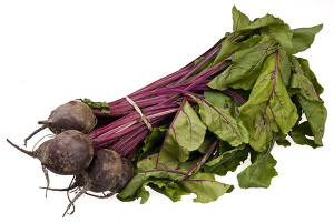 BLOOM-Beets-Bundle
